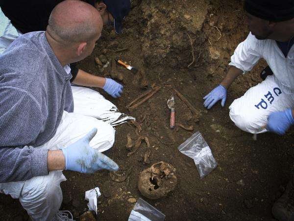photo of scientists excavating remains